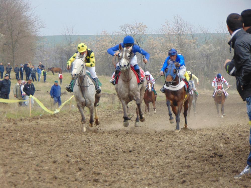 Традиционни конни надбягвания в с. Равнище